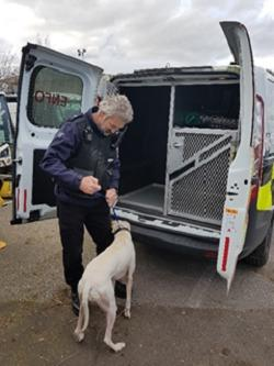 Adrian Rutter, Civic Enforcement Officer with stray dog