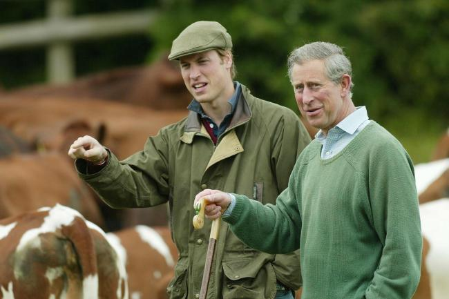 The Duke of Cambridge and the Prince of Wales
