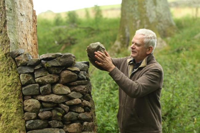 Artist Andy Goldsworthy 1 SA : Artist Andy Goldsworthy works on his latest sculptures in the surrounding fields near his home in Penpoint, Dumfries and Galloway...Picture by Stewart Attwood.