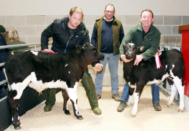 Alan Middleton, left, with his Christmas rearing calf champion, joined by Joss Lancaster and the reserve champion, and judge Graham Stainthorp, who bought both principals, at Skipton Auction Mart
