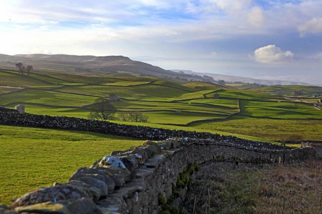 Farmers in the Yorkshire Dales are invited to online meetings about new schemes – Picture: Richard Doughty Photography