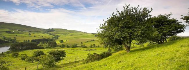 The CLA urges people to re-book their holidays to help rural businesses