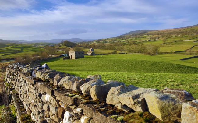 The Yorkshire Dales near Bainbridge.  Picture: Richard Doughty Photography