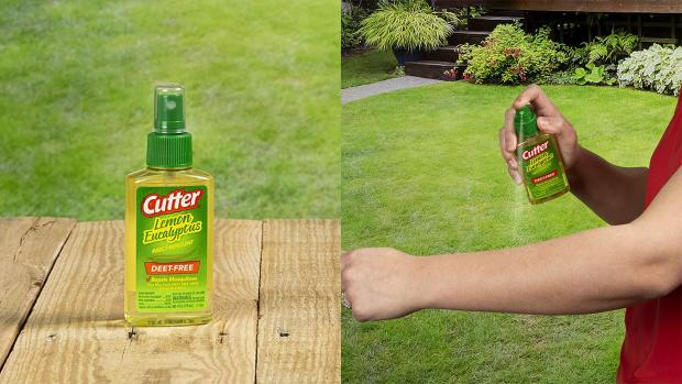 Darlington and Stockton Times: Ditch the horrible smelling insect repellents for one that's fragrant and offers up to six hours of protection. Credit: Cutter