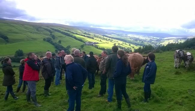 Yorkshire Dales Farmer Network which celebrates it's 10th anniversary this month
