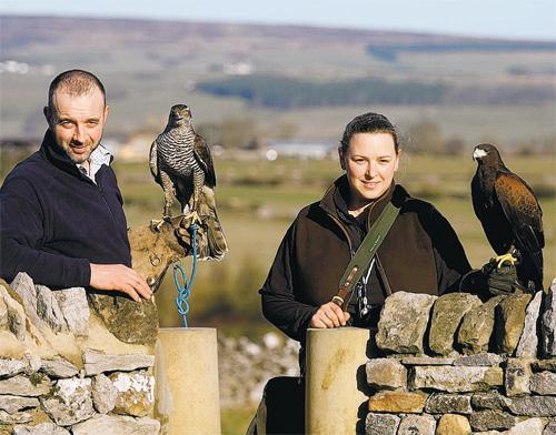 PASSION FOR FLYING: Dairy farmer Tori Goodall, right, who has set up her own falconry business with a Harris hawk and partner David Toms holding a goshawk – Chris Booth/D&S