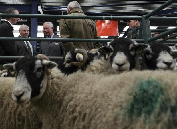 The Prince of Wales talks with farmers in the auction mart at Middleton-in-Teesdale, County Durham