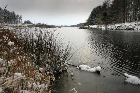 SOURCE TO SEA: The beautiful setting of Cod Beck Reservoir pictured on a winter's day. Cod Beck eventually joins the Swale on the way to the North Sea