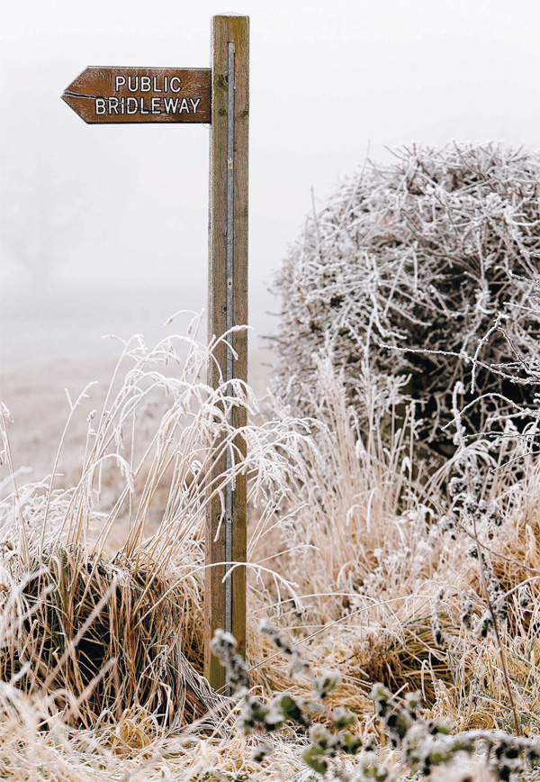 ENVIRONMENT: A frozen scene in Darlington during the cold snap in December - what will 2013 bring?