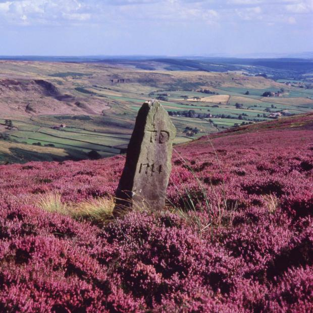 Darlington and Stockton Times: COLOURFUL: The standing stone above Rosedale, as featured in Discover the North York Moors by Roger Osborne