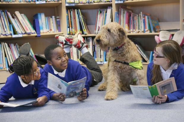 Darlington and Stockton Times: WAGGY DOG STORY: Chachone Chiwaya, left, nine, Louis Chiwanda, nine and Katelyn McAndrews, ten, read to Stella from Pets as Therapy