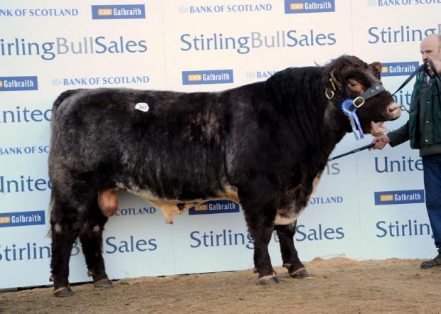 IN THE MONEY: Erasmus II of Upsall sold for 6,000gns