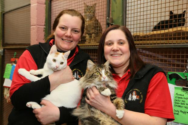RE HOUSING: Sophie Moran and Becky Currie of Sadberge with Popeye and Popcorn, who need to be re homed