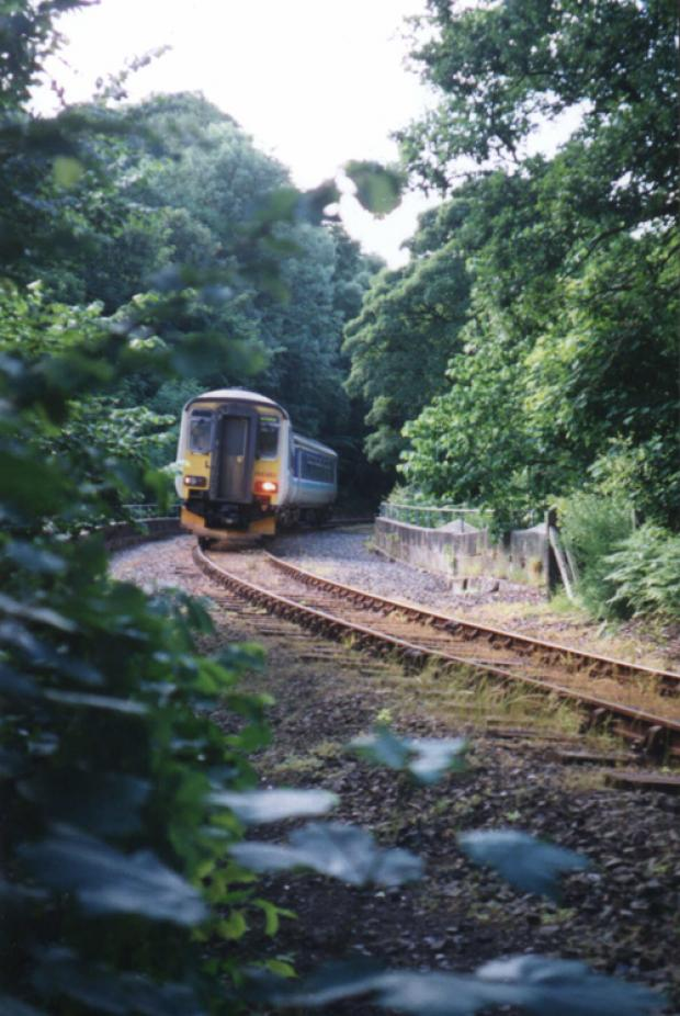 ON TRACK: A train on the Esk Valley line between Whitby and Middlesbrough