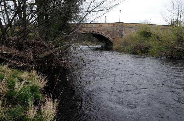 The River Swale at Catterick Bridge