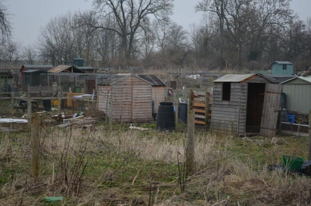 SHED THEFTS: Police patrols are being stepped up at Gainford allotments.