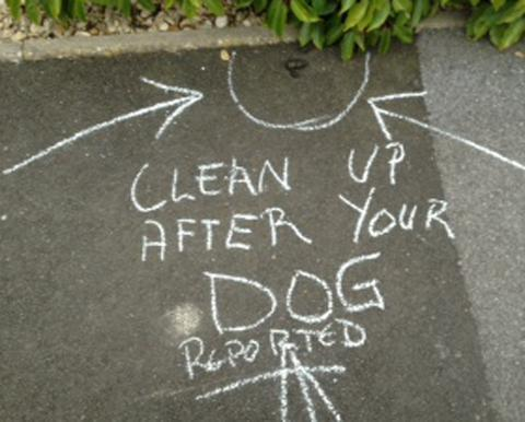 Another dog fouling campaign