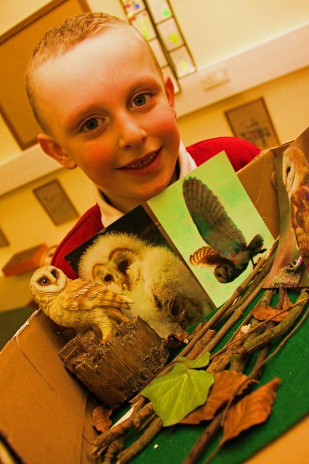 Reid Street pupil Joshua Shepherd, six, shows off his owl habitat