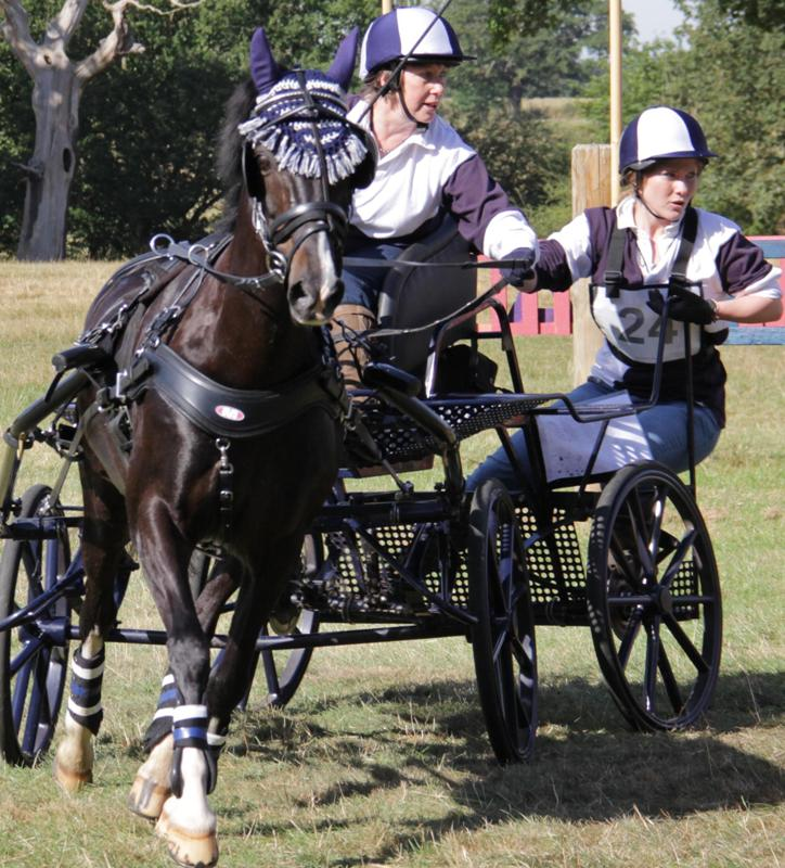 HORSE POWER: Kim (front) and Amanda Usher in carriage driving action with pony Mackie. The mother and daughter team will compete at the British indoor champtionships next month.