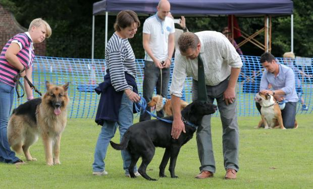 Judging taking place at the dog show at a previous Kirkby Fleetham Feast