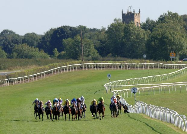ON TRACK: Catterick Bridge Racecourse is considering replacing its turf flat course with a floodlit artificial surface.