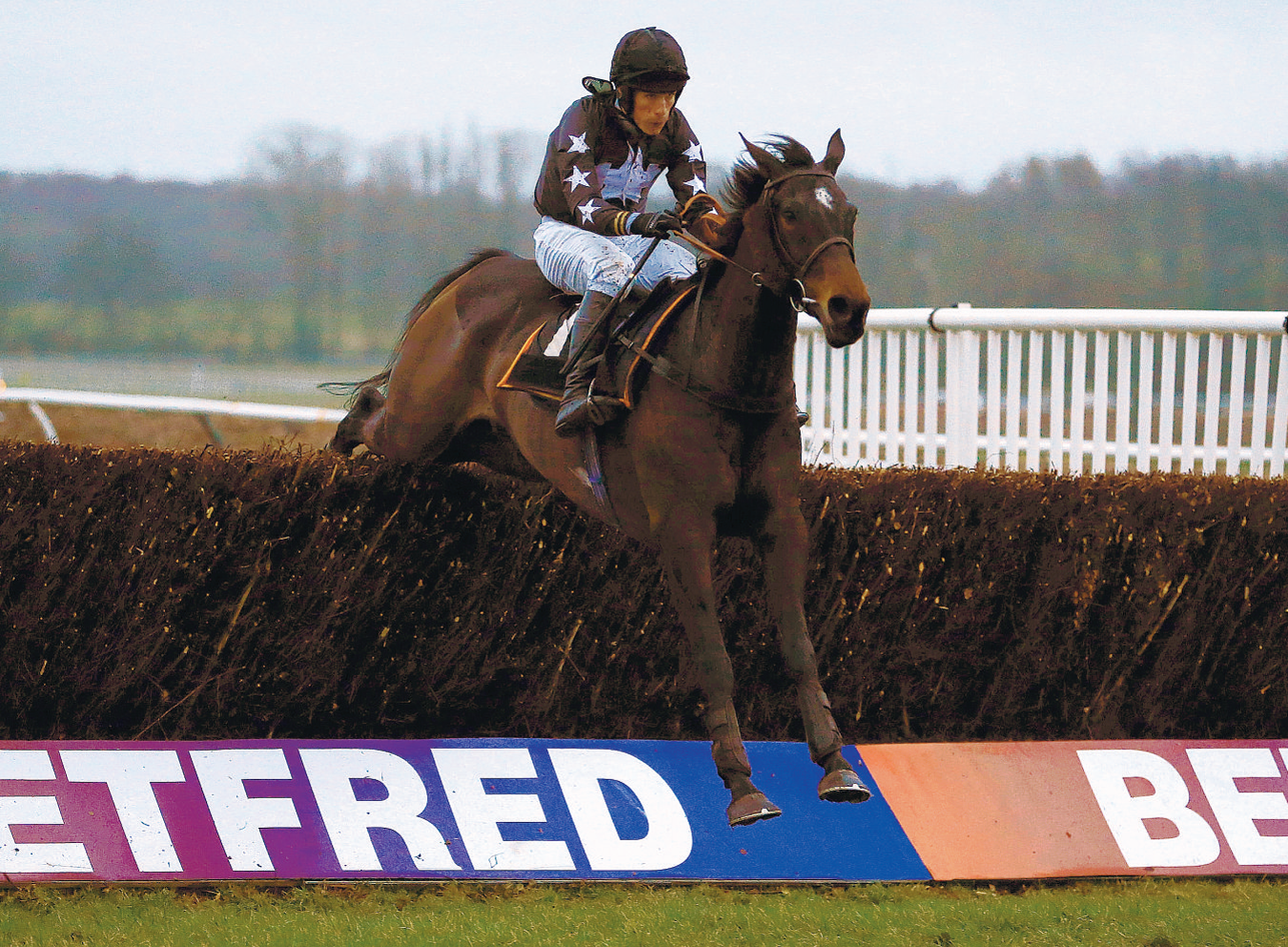 STRETCHING AHEAD: Foundry Square riden by Will Telfer wins the Open Hunters Steeple Chase at Newbury on Wednesday