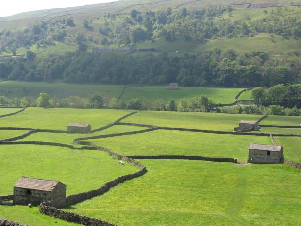 Iconic landscape of Yorkshire Dales National Park