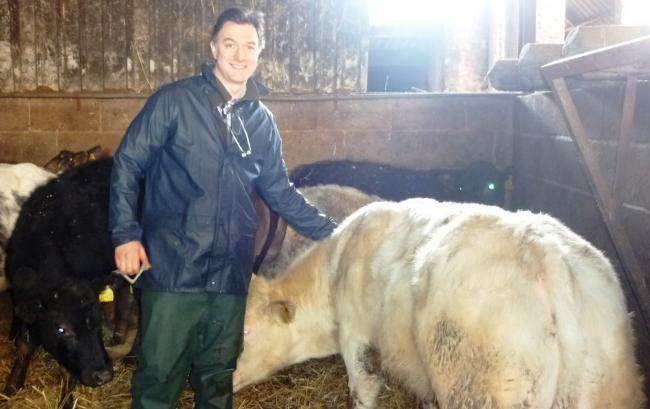 SERVICE: Specialist vet Ben Strugnell will carry out the post mortems