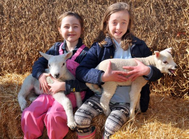 BIG HUGS: Sisters Hannah, seven, and Katherine Lloyd, 12, from Harrogate, cuddle up to lambs at Askham Bryan College open day