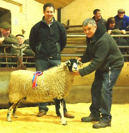 SHEEP RECORD: The champion Swaledale and Bentham mart price record breaker with judge Ian Close, left, and vendor Patrick Sowerby