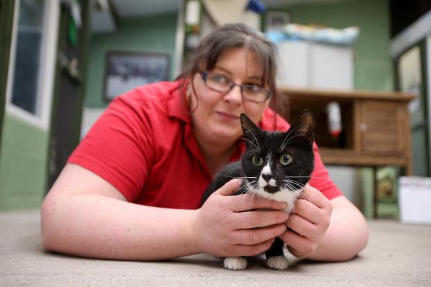 Darlington and Stockton Times: Tina Anderson of Sadberge Boarding Kennels and Cattery with Robin, who is in need of a new home