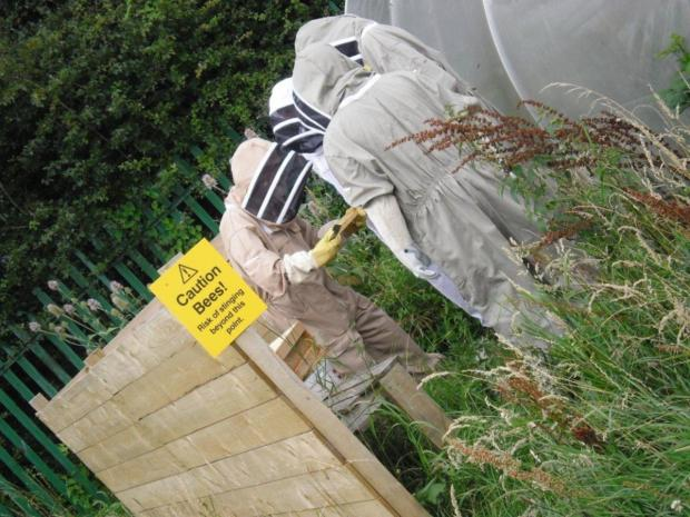 Middlesbrough beekeeping project scoops national award