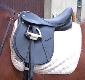 Darlington and Stockton Times: The stolen saddle