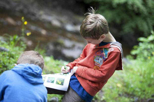 Youngsters enjoy outdoor activities at Bowlees Visitor Centre in Upper Teesdale