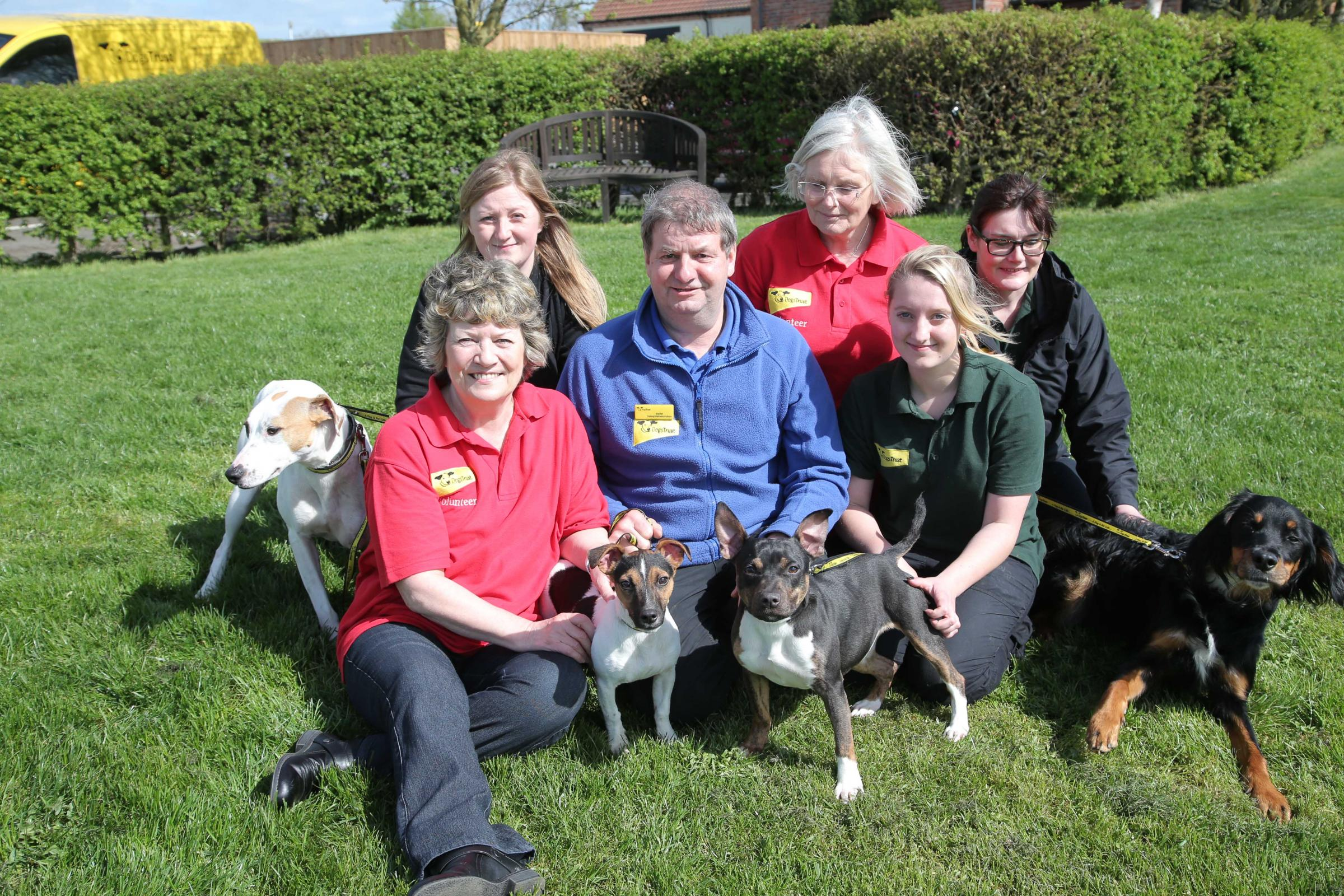 Thousands of dogs rehomed as Dogs Trust Darlington prepares to celebrate its 20th anniver