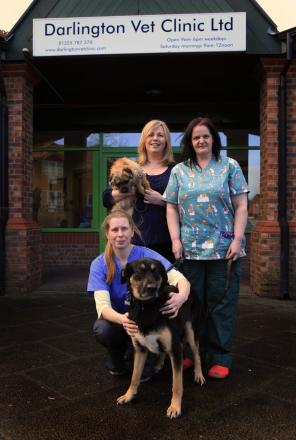 Vet Rebecca Bradley with practice manager Louise Craggs, head nurse Carolyn Woodhall and dogs Fern and Zebedee