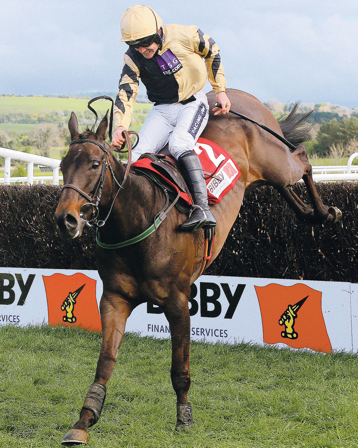 OVERSEAS WINNER: Boston Bob ridden by Ruby Walsh wins The Bibby Financial Services Ireland Punchestown Gold Cup