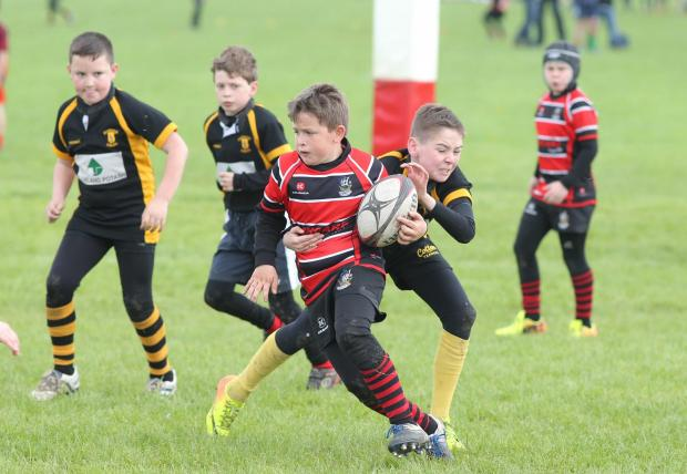 MAXIMUM EFFORT: Redcar in red versus Guisborough in black and yellow compete in Darlington's mini rugby festival