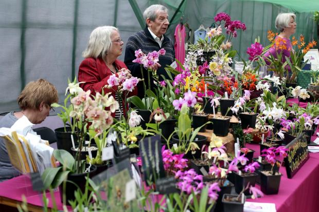 Visitors enjoy the 14th annual orchid show at Raby Castle. Picture by Chris Booth