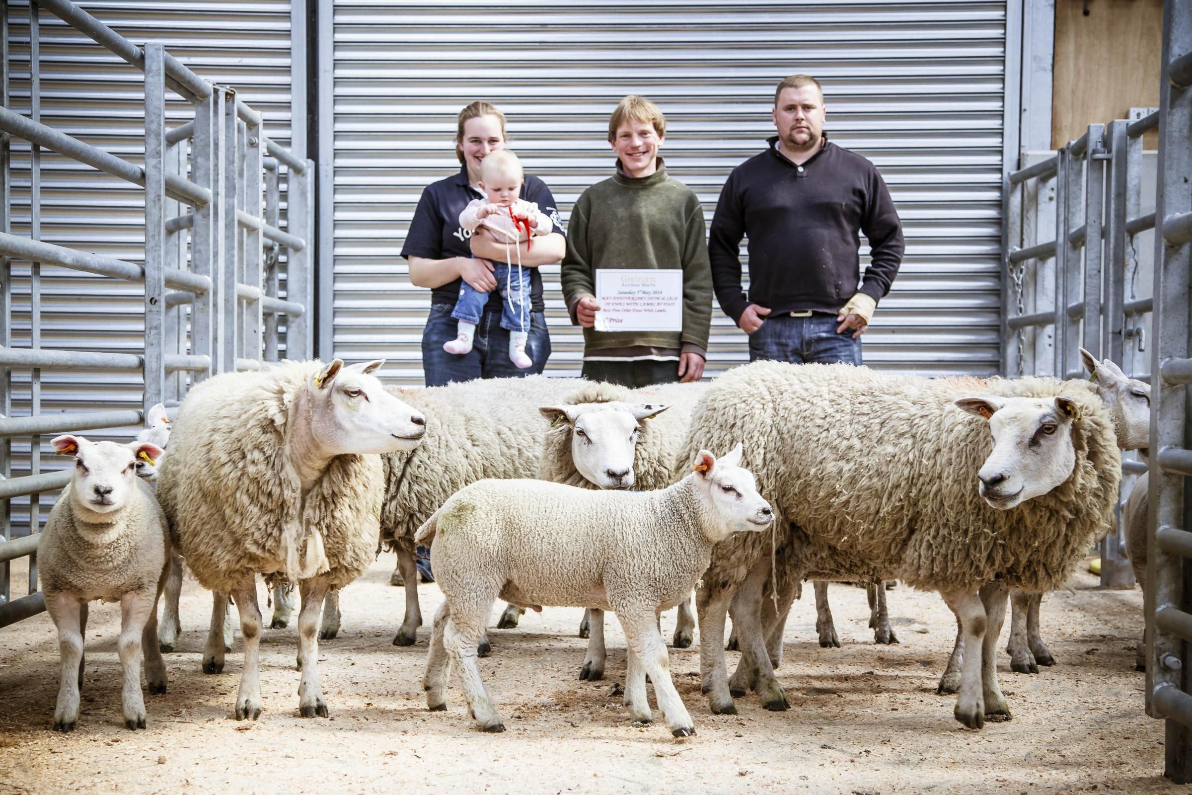 CHAMPION EWES: Anthony Thompson (centre) with his prize winning shearling ewes with lambs that topped at £470 pictured with his partner, Emma Dalby, and judge Chris Hewitt.