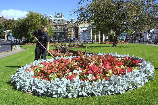 BLOOMING MARVELLOUS: Harrogate comes out tops as the happiest place to live