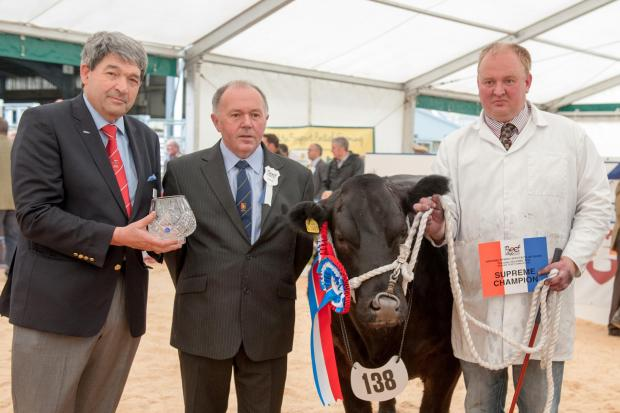 WINNING TEAM: from left, sponsor Roy Firth, Crystalix regional manager for Scotland and East of England, judge Philip Parrott, and Neil Slack and Watabootie, the supreme champion at the National Beef Exhibition's Beef Expo 2014 held at Hexham Auction
