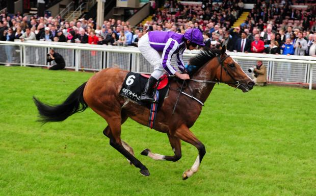 Darlington and Stockton Times: Marvellous, ridden by Ryan Moore