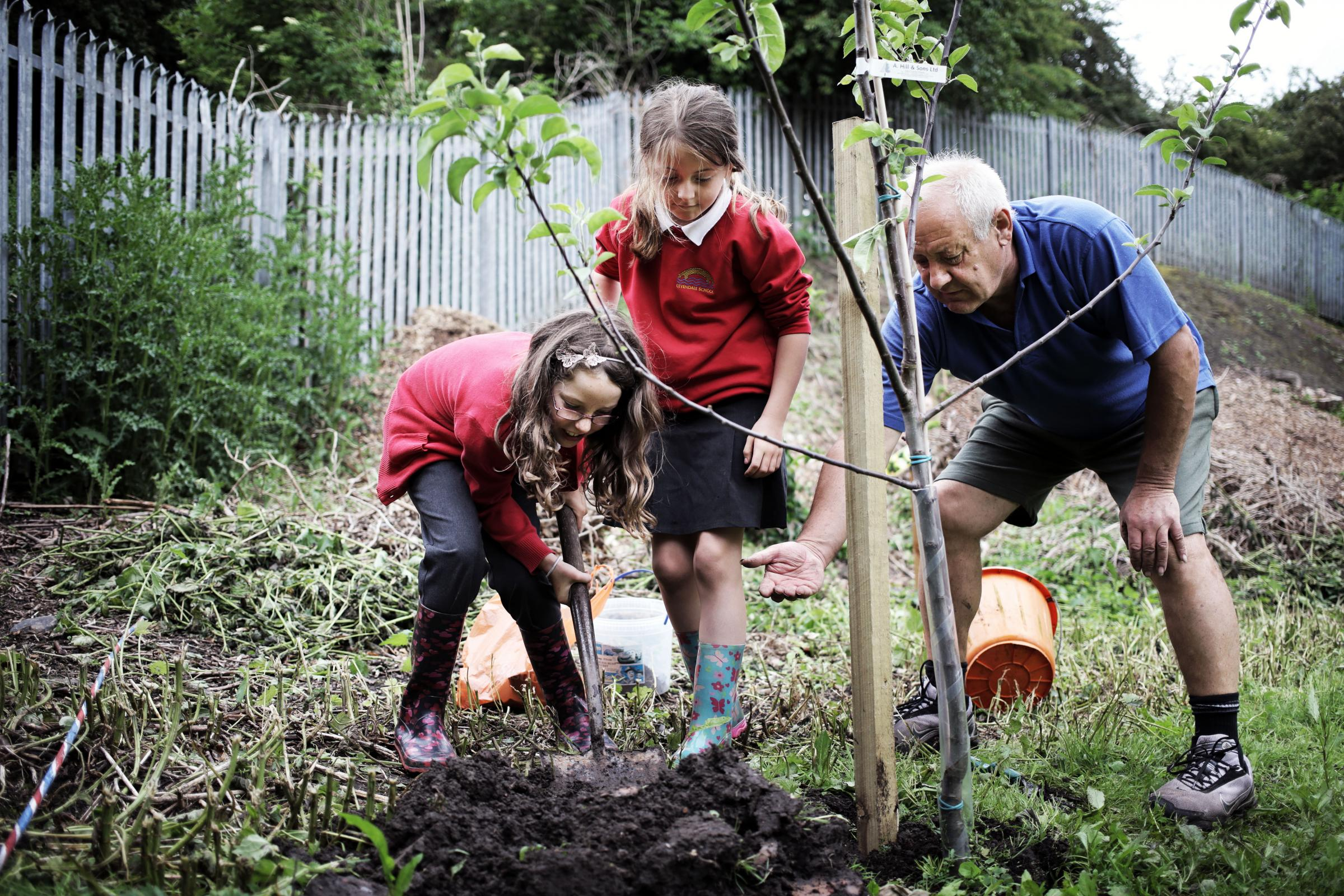 Tree-mendous day for Yarm children