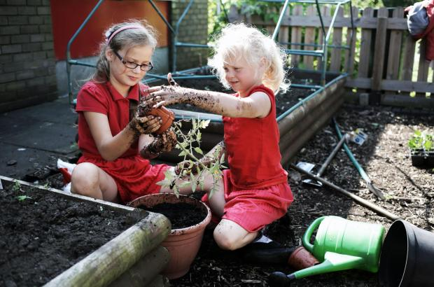 Darlington and Stockton Times: GREEN FINGERS: Chloe Heseltine and Amelia Coverdale planting tomatoes at the Red Hall Junior School gardening club. The after-school club will soon benefit from a plastic bottle greenhouse. PICTURE: Stuart Boulton