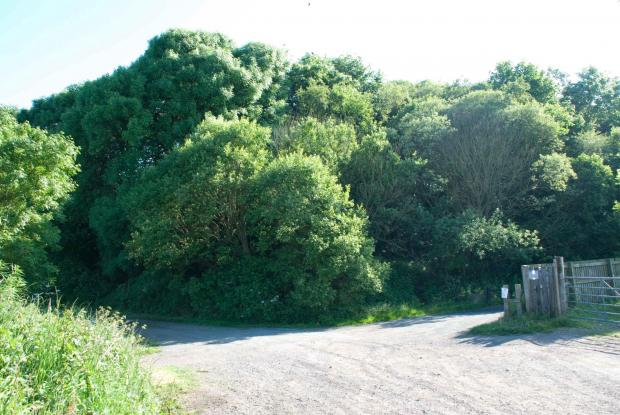 Spoil tip and cycle path  (7348314)