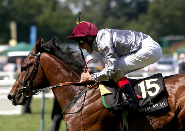Darlington and Stockton Times: ON HIS WAY: The Wow Signal ridden by Frankie Dettori before winning the Coventry Stakes at Ascot Racecourse on Tuesday