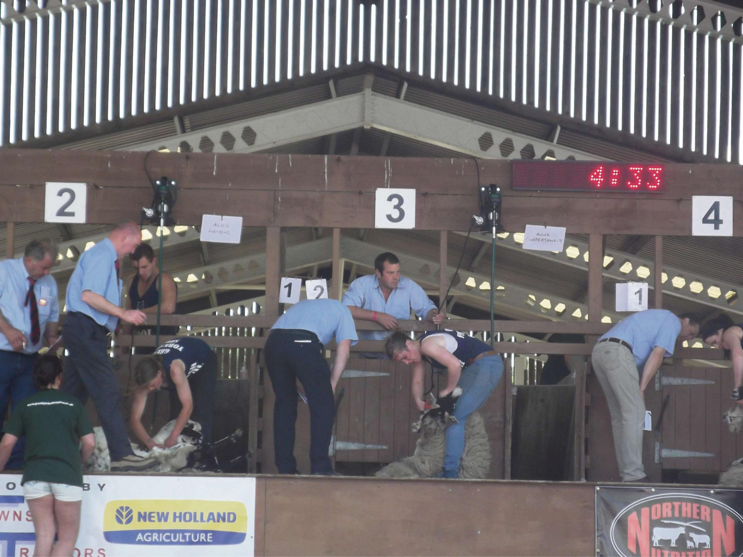 Princess Royal shown show's first ever female sheep shearing contest
