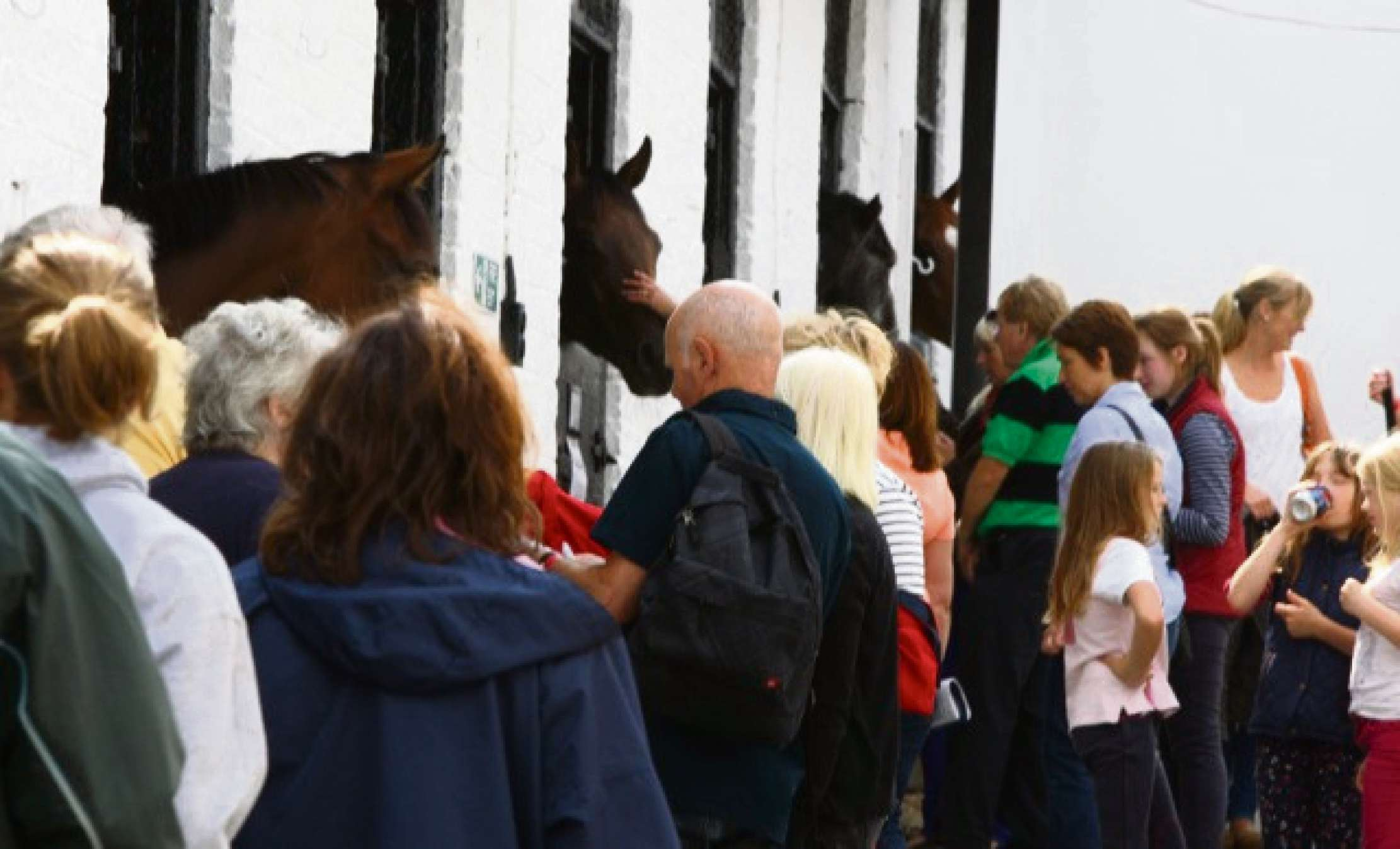 OPEN DAY: Meet the horses, jockeys and trainers at Malton.