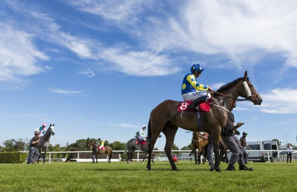GETTING READY: The horses before the start of the Racing UK Profits Returned To Racing Handicap Stakes during Ladies Day of the Coral-Eclipse Sandown Festival at Sandown Racecourse